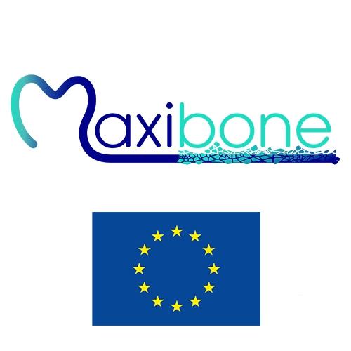 2018: A new Maxibone EU project Kick-off meeting at Nantes, France